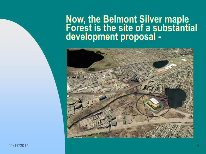 Now, the Belmont Silver maple Forest is the site of a substantial development proposal -