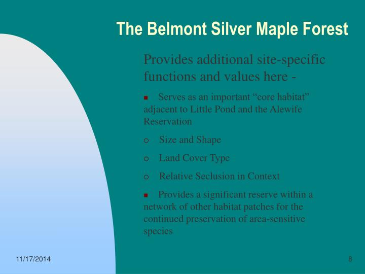 The Belmont Silver Maple Forest