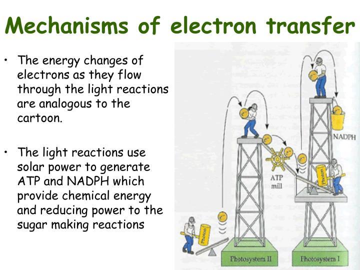 Mechanisms of electron transfer