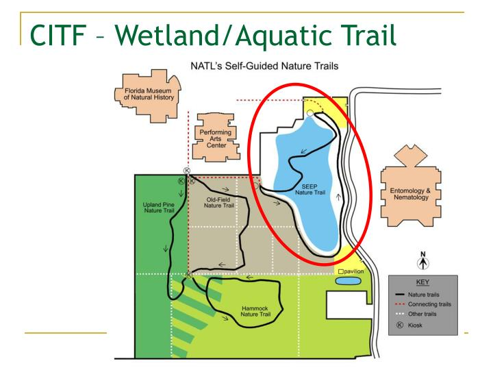 CITF – Wetland/Aquatic Trail