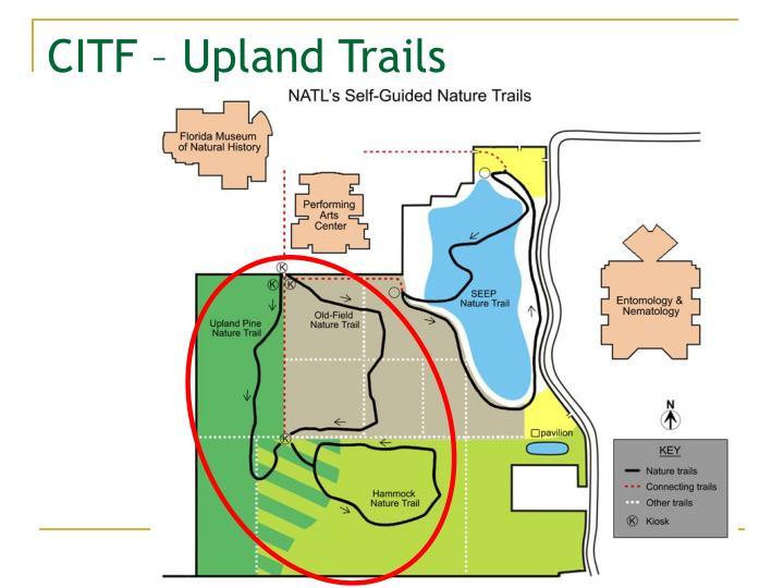 CITF – Upland Trails