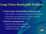 large delay bandwidth products