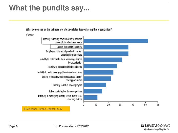 What the pundits say...