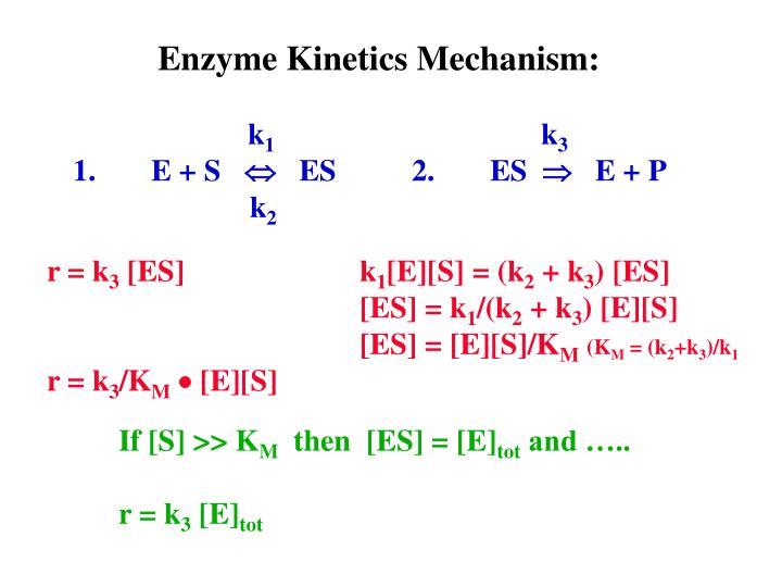 Enzyme Kinetics Mechanism: