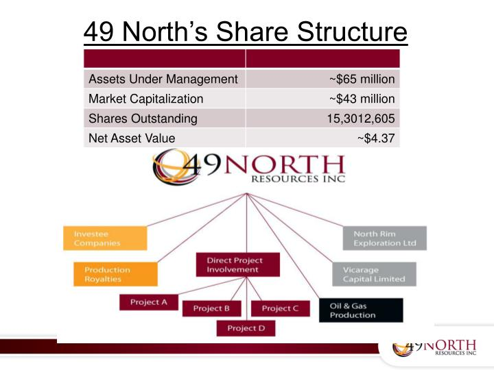 49 North's Share Structure