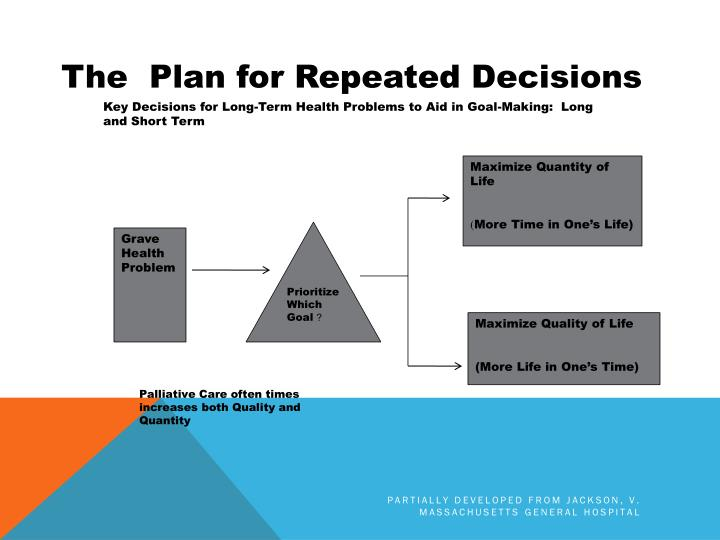 The  Plan for Repeated Decisions