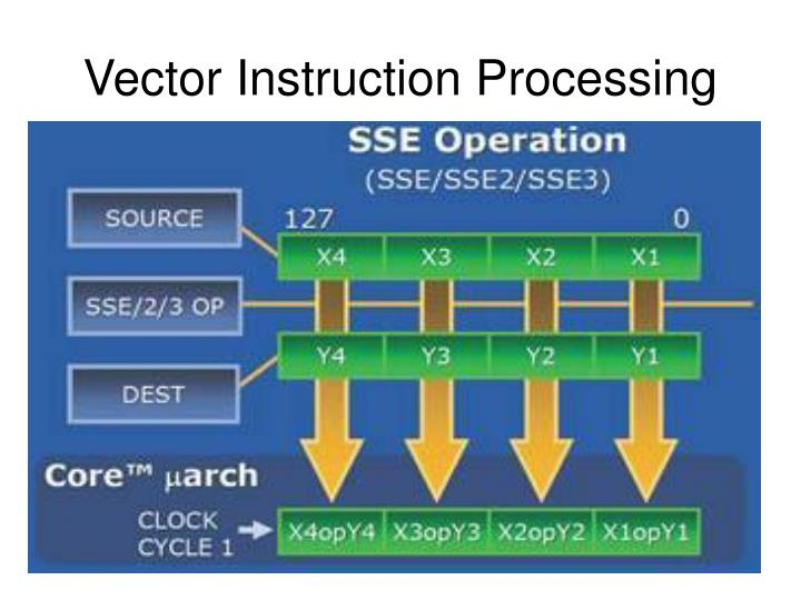 Vector Instruction Processing
