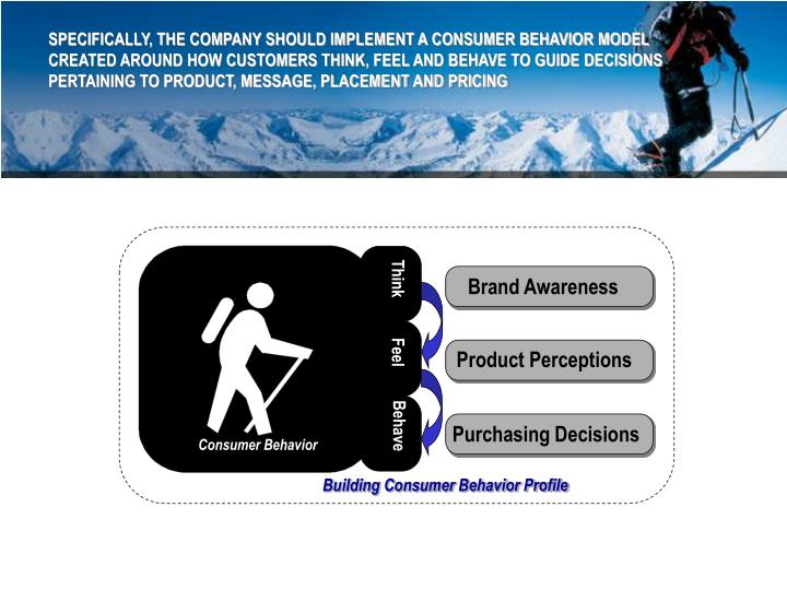 SPECIFICALLY, THE COMPANY SHOULD IMPLEMENT A CONSUMER BEHAVIOR MODEL CREATED AROUND HOW CUSTOMERS THINK, FEEL AND BEHAVE TO GUIDE DECISIONS PERTAINING TO PRODUCT, MESSAGE, PLACEMENT AND PRICING
