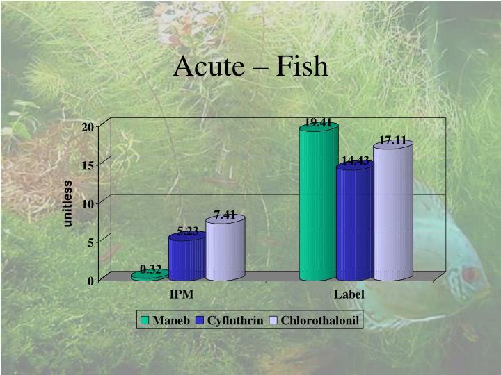 Acute – Fish