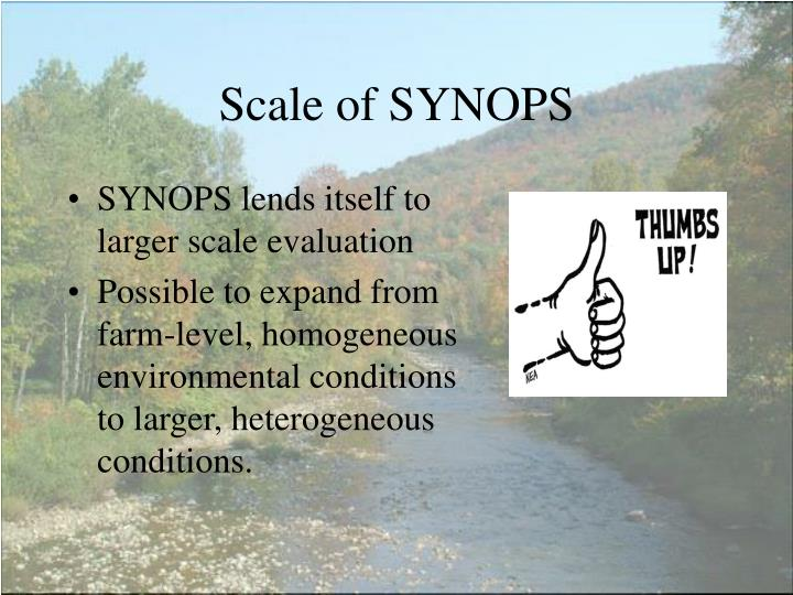 Scale of SYNOPS