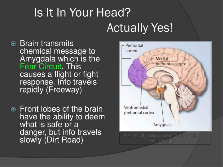 Is It In Your Head?