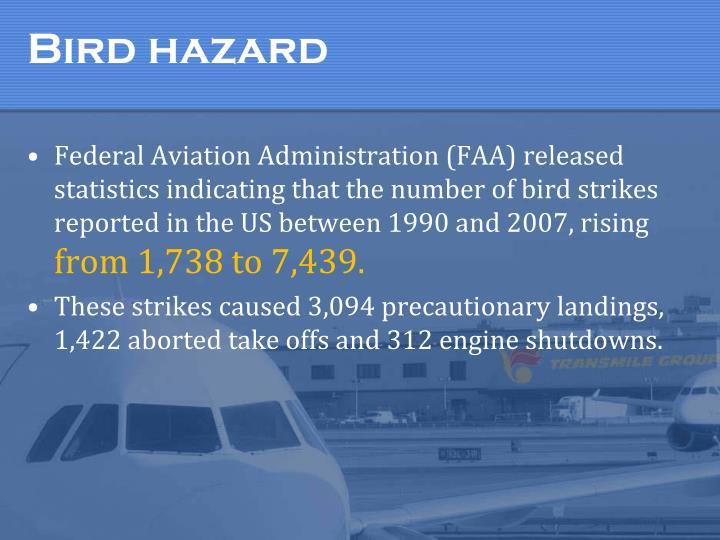 Bird hazard