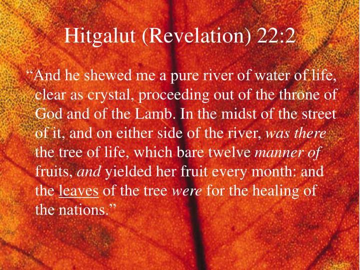 Hitgalut (Revelation) 22:2