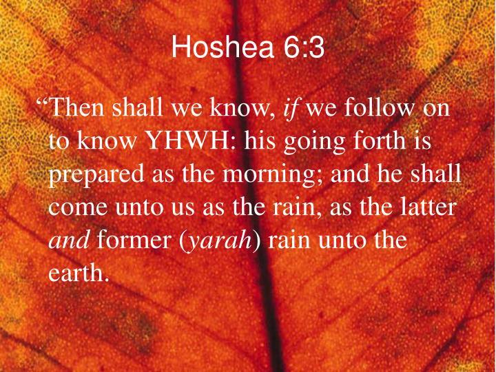 Hoshea 6:3