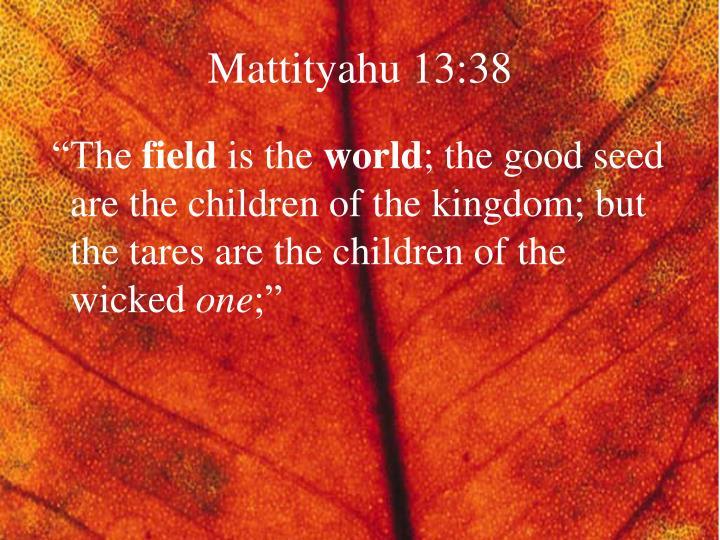 Mattityahu 13:38