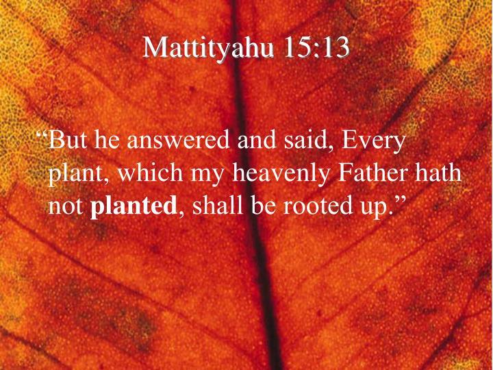 Mattityahu 15:13