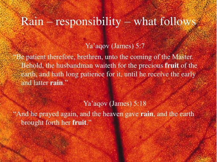 Rain – responsibility – what follows