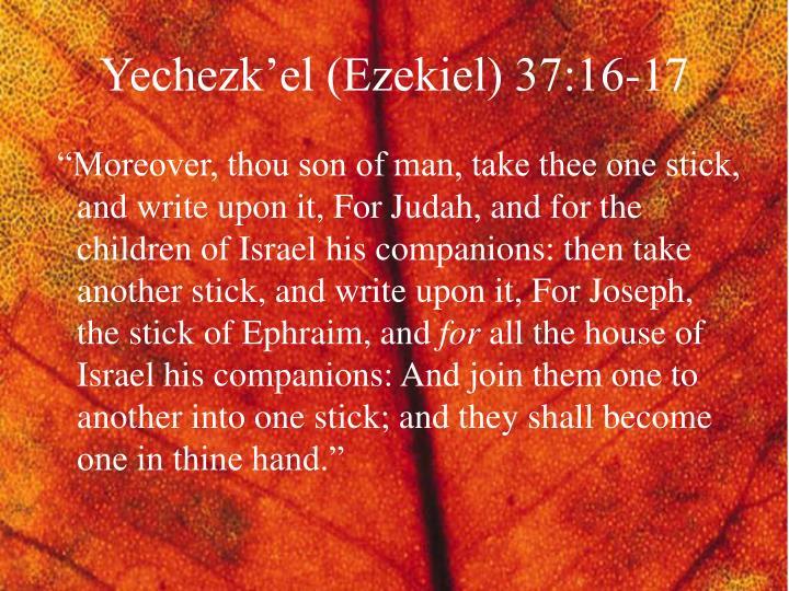 Yechezk'el (Ezekiel) 37:16-17