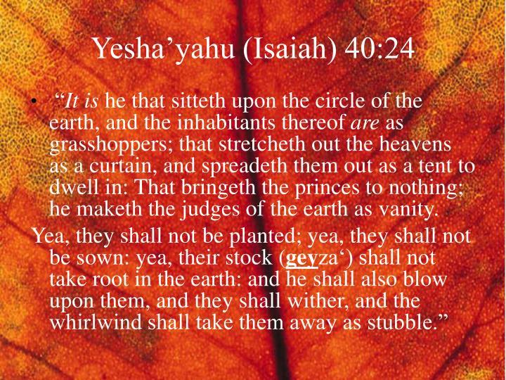 Yesha'yahu (Isaiah) 40:24