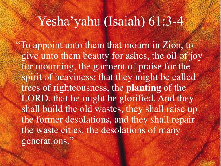 Yesha'yahu (Isaiah) 61:3-4