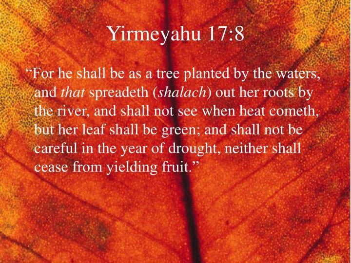 Yirmeyahu 17:8