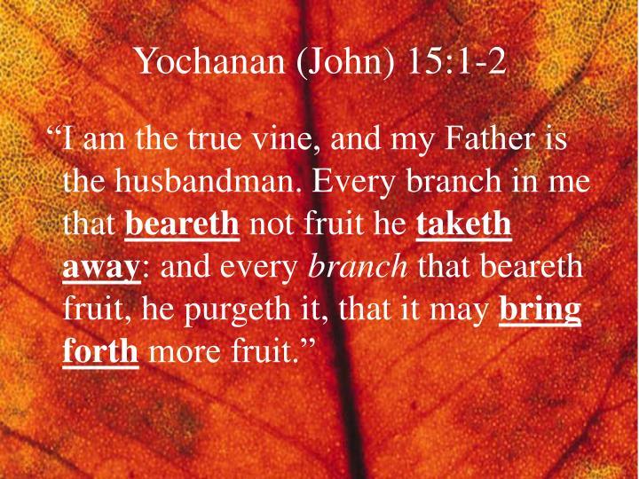 Yochanan (John) 15:1-2