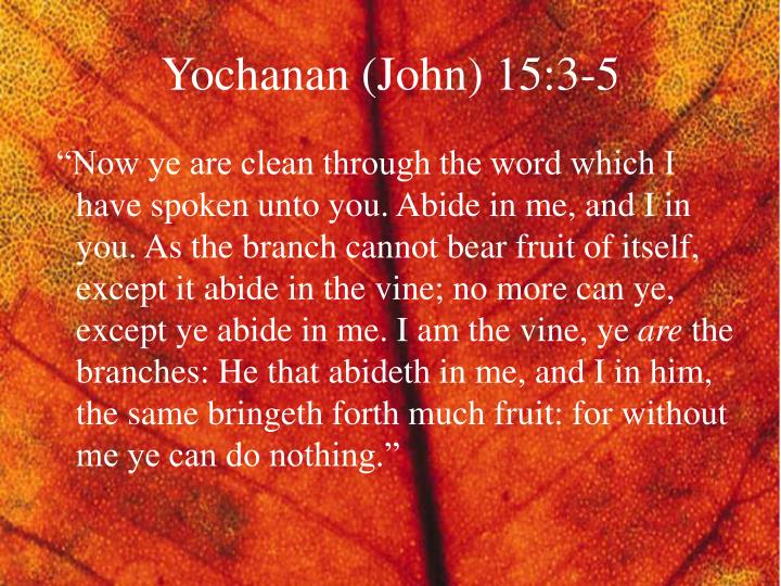 Yochanan (John) 15:3-5