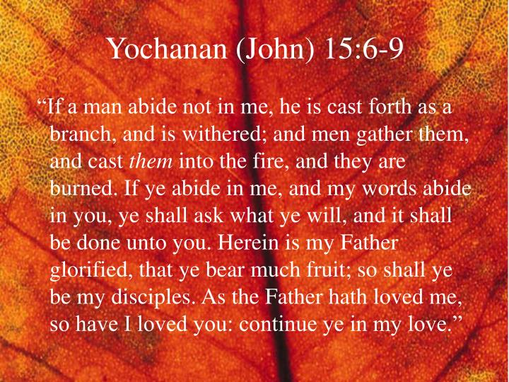 Yochanan (John) 15:6-9