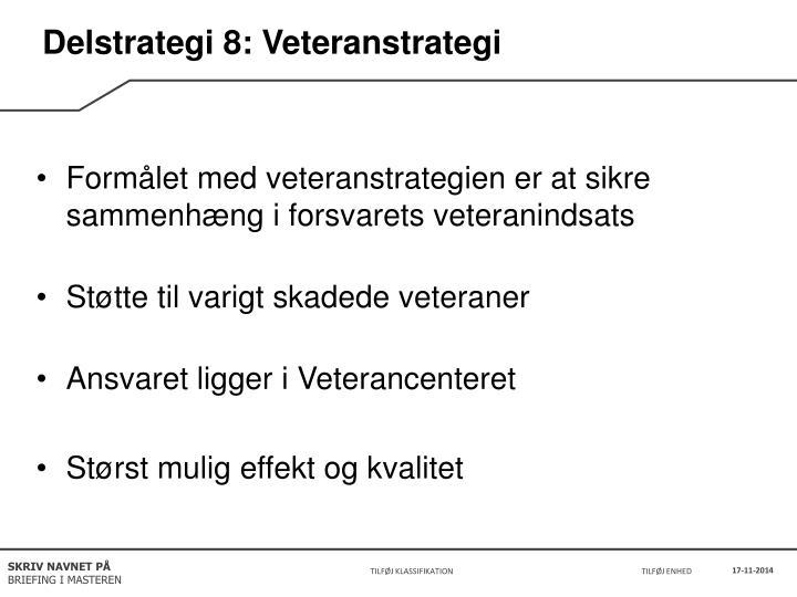 Delstrategi 8: Veteranstrategi