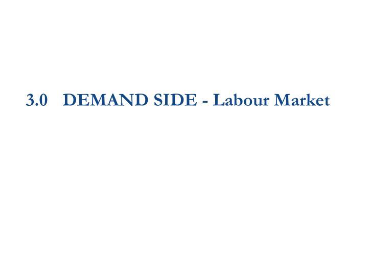 3.0DEMAND SIDE - Labour Market