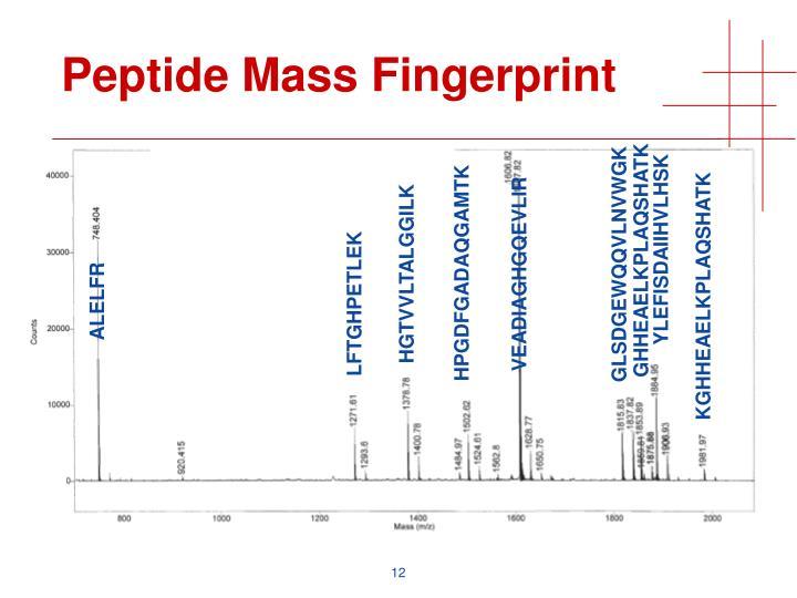 Peptide Mass Fingerprint