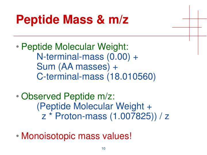 Peptide Mass & m/z