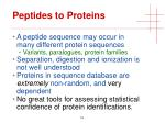 peptides to proteins2