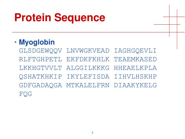 Protein Sequence