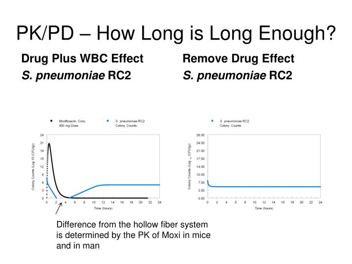 PK/PD – How Long is Long Enough?