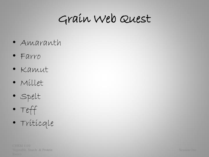 Grain Web Quest