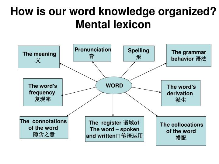 How is our word knowledge organized?