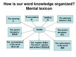 how is our word knowledge organized mental lexicon