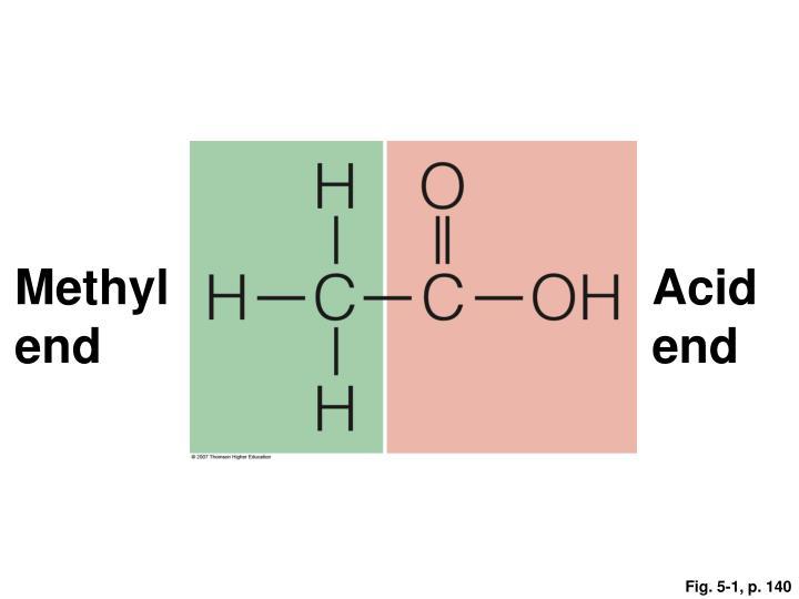Methyl end