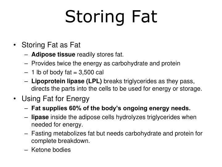 Storing Fat as Fat