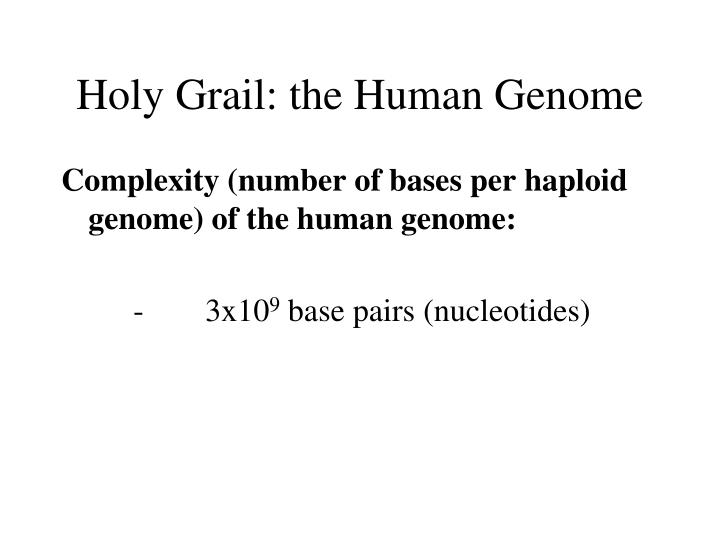 Holy Grail: the Human Genome