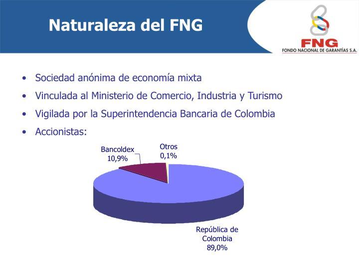 Naturaleza del FNG