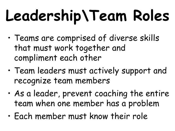 Leadership\Team Roles