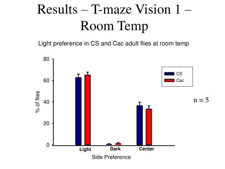 Results – T-maze Vision 1 – Room Temp