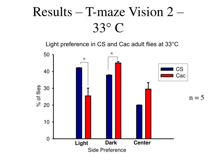 Results – T-maze Vision 2 –    33