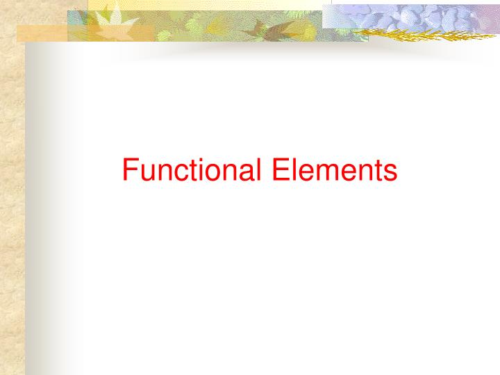 Functional Elements