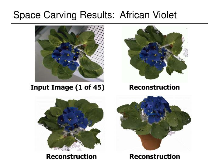 Space Carving Results:  African Violet