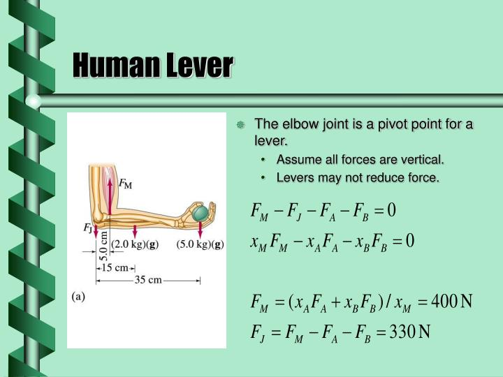 Human Lever