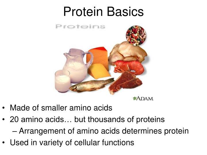 Made of smaller amino acids