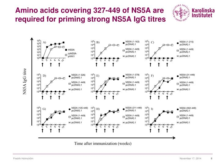 Amino acids covering 327-449 of NS5A are required for priming strong NS5A IgG titres